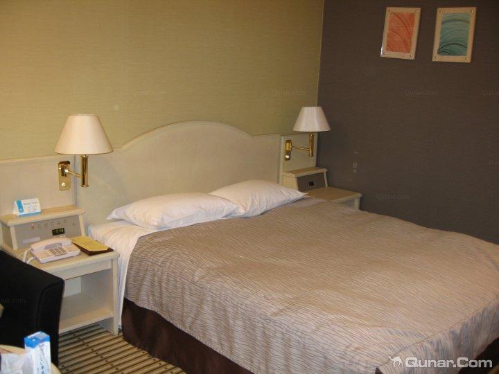 千叶县日航成田酒店(Hotel Nikko Narita)