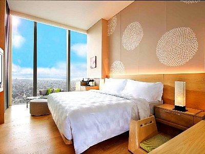 大阪万豪酒店(Osaka Marriott Miyako Hotel)