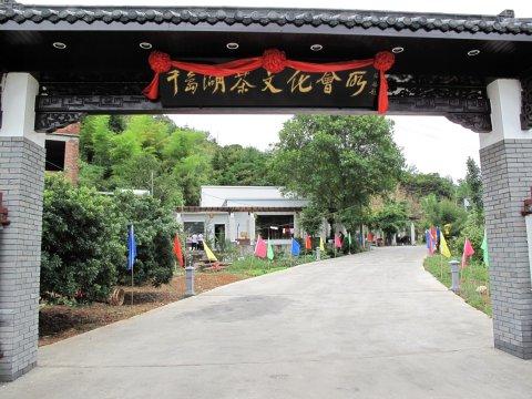 千岛湖茶文化民宿