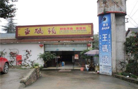 蒲江朝阳湖王码头农家乐