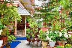 喜玛拉雅酒店(Hotel Himalayan Inn)