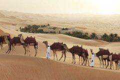 阿布扎比安纳塔拉盖斯尔阿萨拉沙漠度假村(Qasr Al Sarab Desert Resort by Anantara Abu Dhabi)