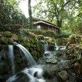 罗莱夏朵·杭州紫萱度假村