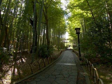 修善寺滝亭温泉酒店(Shuzenji Onsen Hotel Takitei)