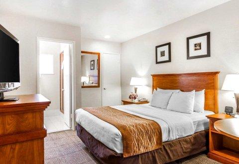 蒙特里尔1252号酒店(The Inn at 1252 - Monterey)