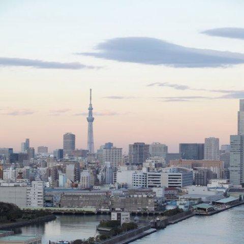 东京湾洲际酒店(InterContinental Tokyo Bay)