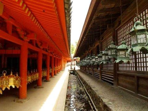 奈良小町宾馆(Guesthouse Nara Komachi)