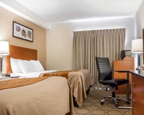 滑铁卢康福特茵酒店(Comfort Inn Waterloo)