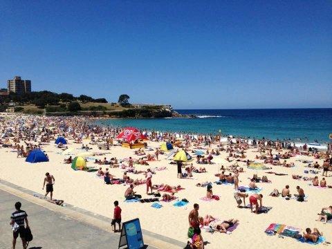 悉尼库吉海滩潜水酒店(Dive Hotel Coogee Beach Sydney)
