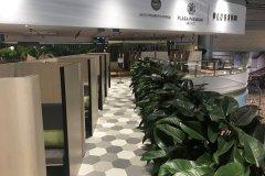新加坡花期-SATS&环亚至尊休息室-4号航站楼(Blossom – Sats & Plaza Premium Lounge(T4) Singapore)