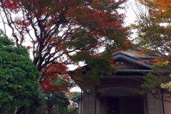 仙石原温泉第七天堂酒店(Sengokuhara Onsen 7TH Heaven)