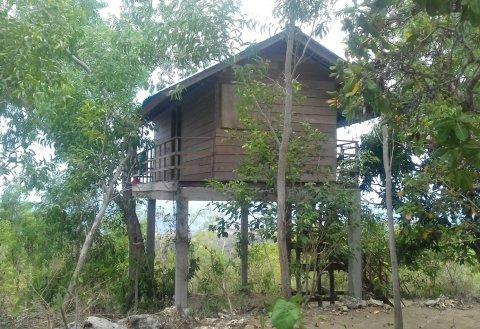 鲁玛博宏山间小屋(Rumah Pohon)