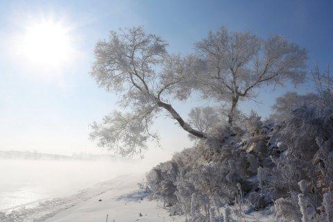 雾凇岛雪之家客栈