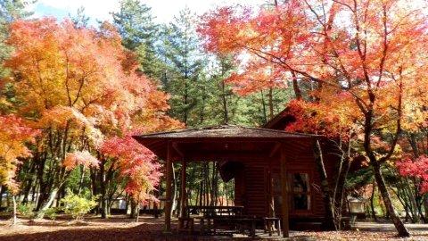 梅岛温泉 贷别庄 金山温泉 木屋旅馆(Kinzan Onsen Log House)