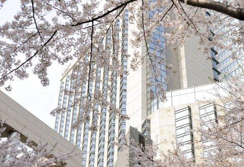 东京君悦酒店(Grand Hyatt Tokyo)