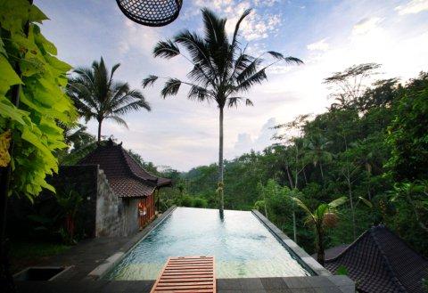 DD乌布丛林旅馆(DD Ubud Jungle Villa)