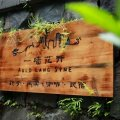 杭州一墙花开庭院咖啡民宿