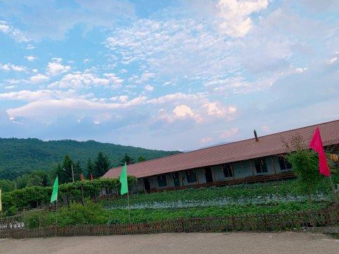 海林二龙农家院