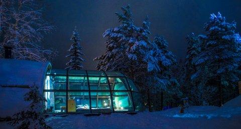伊尔斯丽娜拉努阿拉普兰北极光酒店(Lapland Northern Lights Hotel Ilveslinna Ranua)
