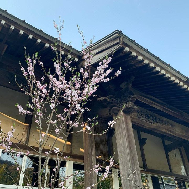 真宗大谷派宿坊(Ryokoji Shukubo)