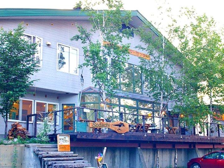 高山背包客青年旅舍(Alpine Backpackers - Hostel)
