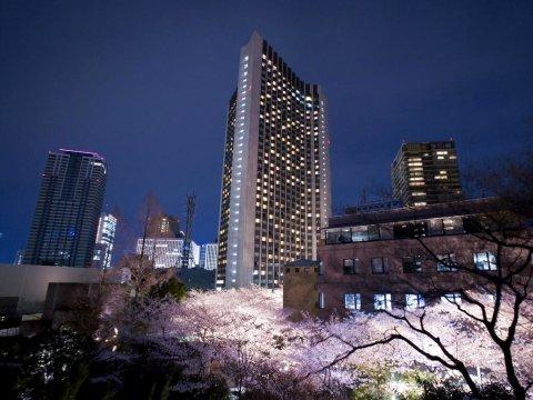 东京全日空洲际酒店(ANA InterContinental Tokyo)