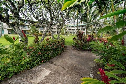 莫洛凯岛假日住宅 - 维夫克雷斯特(Molokai Vacation Properties – Wavecrest)