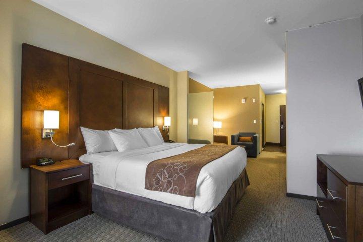 萨斯卡通舒适套房酒店(Comfort Suites Saskatoon)