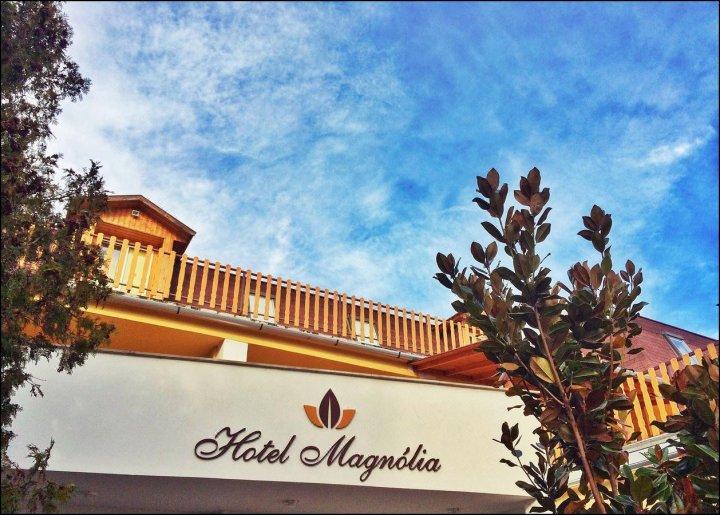 木兰酒店(Hotel Magnólia)