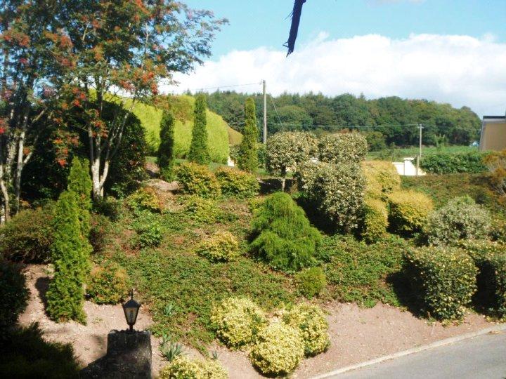 布拉尼瓦莱住宿加早餐旅馆(Blarney Vale B&B)