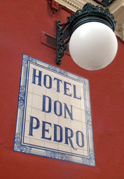 堂佩德罗阳台民宿(Casa Palacio Don Pedro)