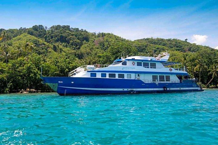 挞瓦利休闲潜水度假村酒店(Tawali Leisure and Dive Resort)