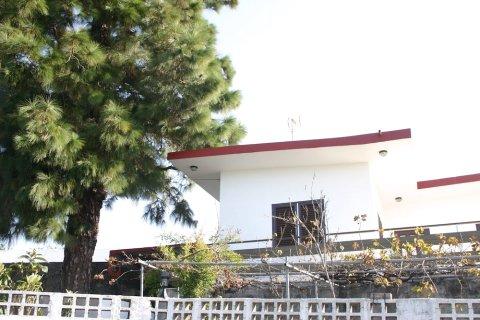 威达迪民宿(Casa Widad)