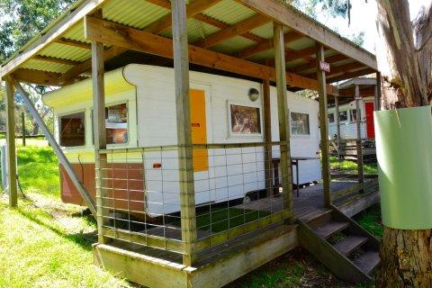 宾必公园 - 考拉露营假日公园(Bimbi Park - Camping under Koalas)
