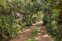 绿色花园度假村(Green Garden Resort)